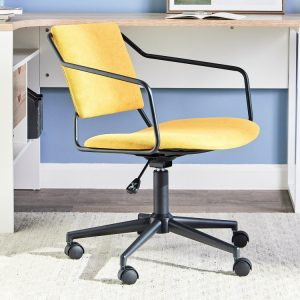 low back chair: best gifts for those who work from home